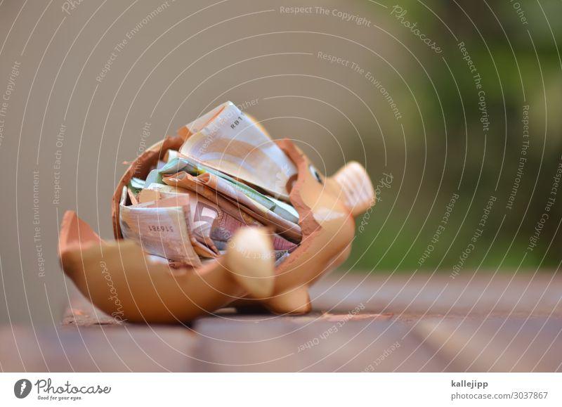 schwein gehabt Ferien & Urlaub & Reisen Lifestyle Glück Erfolg kaputt Geld Geldinstitut Reichtum Wirtschaft reich Geldscheine sparen Euro Kapitalwirtschaft 50