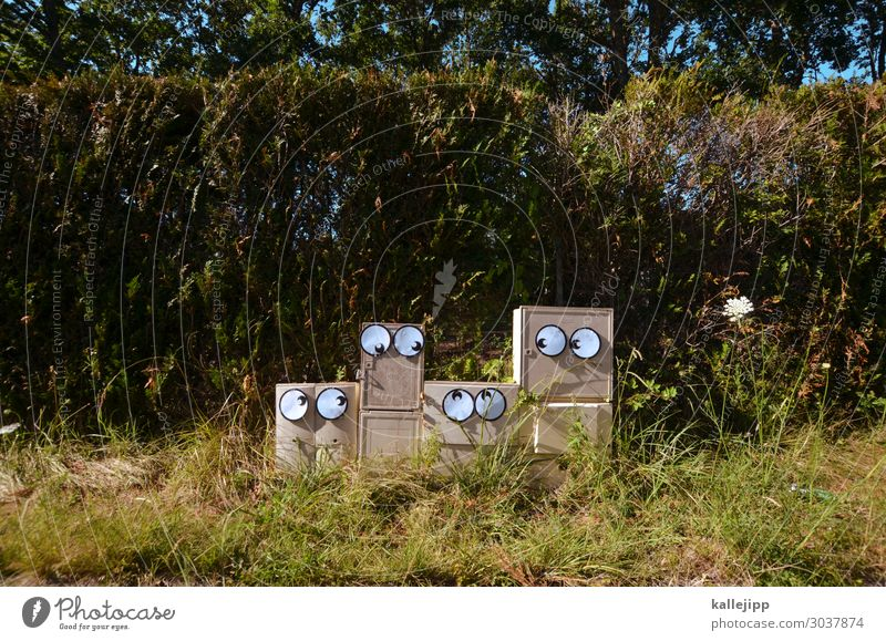 familientreffen Mensch Auge 4 Stadt Blick Comic Telekommunikation blickkontackt stromkasten Energie Hecke Wiese Gras Familie & Verwandtschaft Familienglück