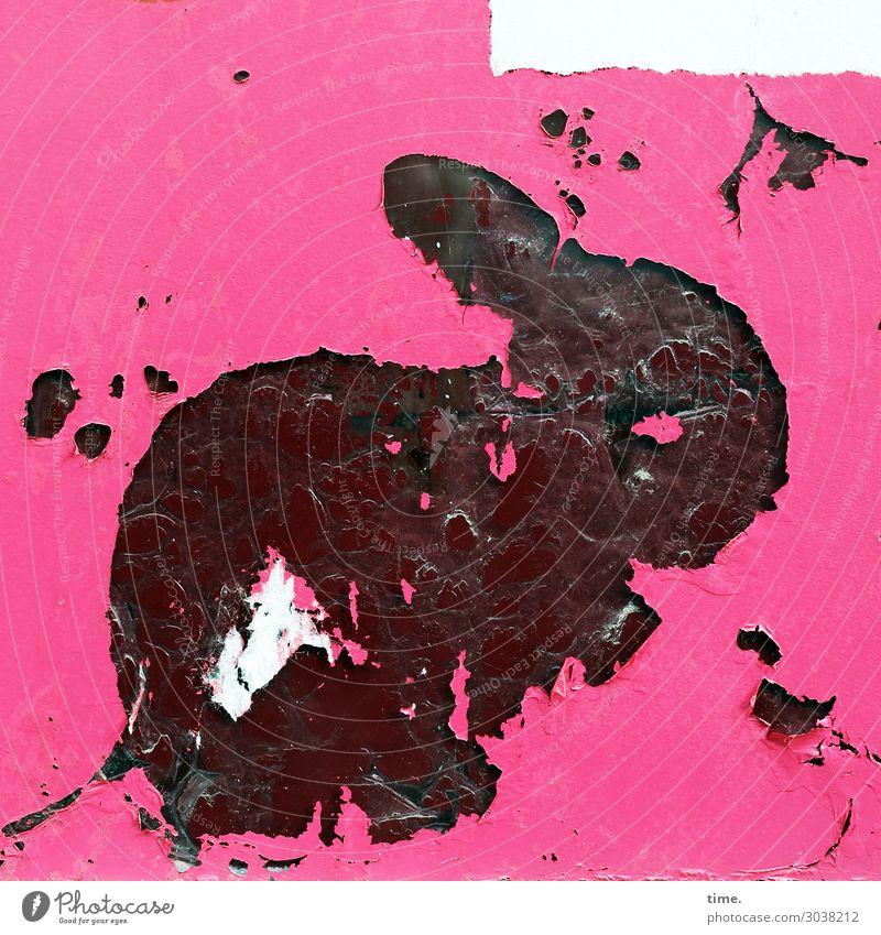 Hautsache | Brandspuren Tier Fenster dunkel Gefühle rosa Dekoration & Verzierung Glas sitzen Schilder & Markierungen Vergänglichkeit kaputt Zeichen Kunststoff