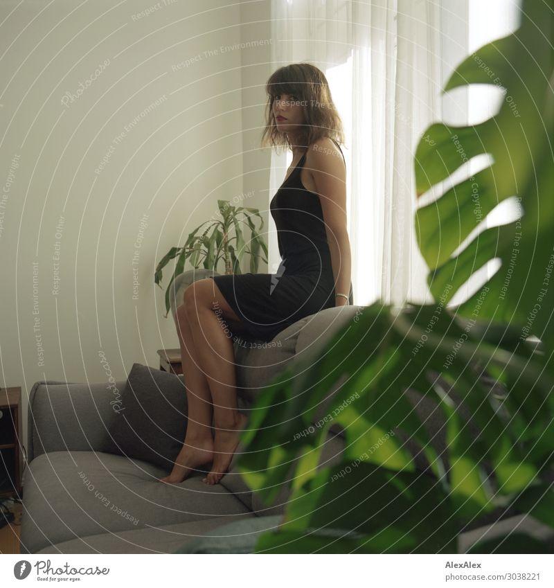 Junge Frau sitzt auf Couch im Wohnzimmer Lifestyle Stil schön harmonisch Wohnung Sofa Jugendliche Beine 18-30 Jahre Erwachsene Grünpflanze Zimmerpflanze Kleid