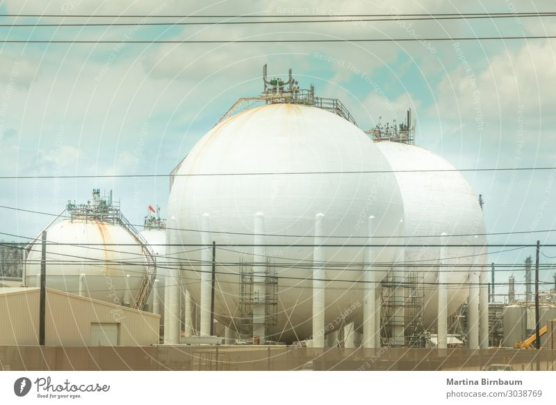 Öllagertank in der petrochemischen Raffinerieindustrie Anlage Fabrik Wirtschaft Industrie Business Technik & Technologie Umwelt Pflanze Himmel Architektur