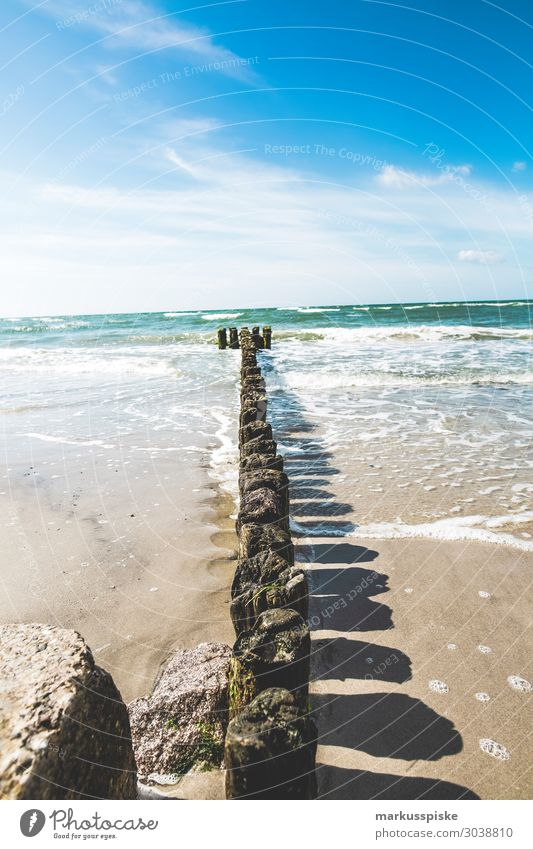 Møns Klint Natur Küste Wellen Europa Getränk Ostsee tauchen frieren Dänemark Mon Mons Klint