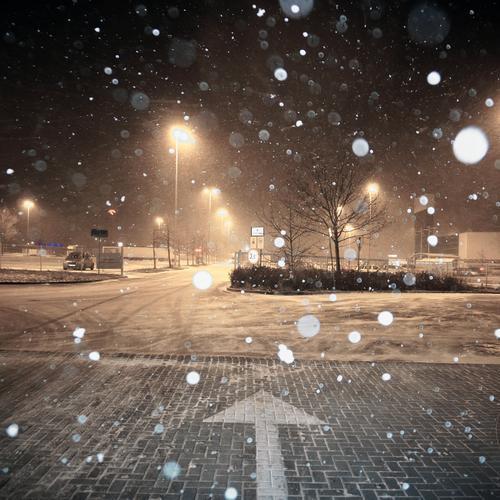 Schneit schon wieder Winter Schönes Wetter Schnee Schneefall Baum Sträucher Polen Osteuropa Verkehr Parkplatz Parkplatzbeleuchtung Straßenbeleuchtung