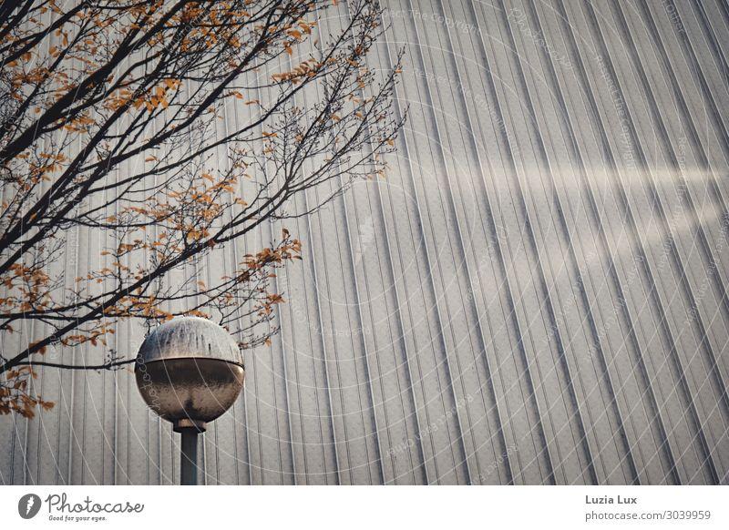 Silberdach Stadt Menschenleer Gebäude Architektur Halle Fassade Dach Straßenbeleuchtung leuchten grau Gedeckte Farben Außenaufnahme Textfreiraum rechts