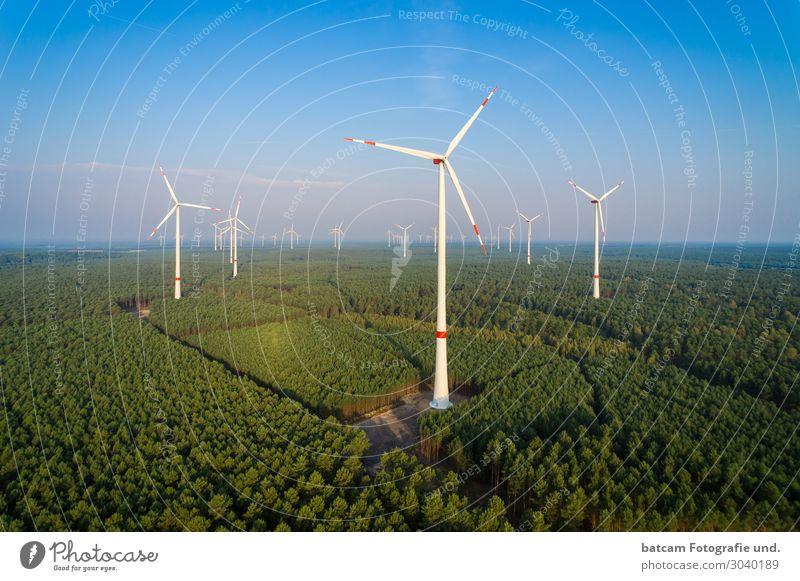 Luftbild Windpark im Wald Technik & Technologie Energiewirtschaft Erneuerbare Energie Windkraftanlage Natur Landschaft Wolkenloser Himmel Sonne Sommer