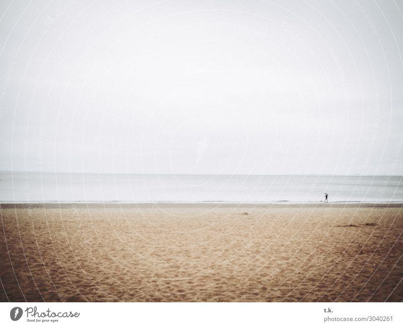alone at the beach Ferne Freiheit Strand Meer Natur Landschaft Sand Wasser Himmel Regen Küste Nordsee Edinburgh Portobello Schottland Einsamkeit Erholung Idylle