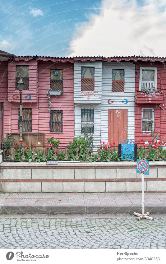 red white rowhouses Häusliches Leben Wohnung Traumhaus Himmel Wolken Sommer Schönes Wetter Tulpe Garten Istanbul Stadt Altstadt Haus Einfamilienhaus Bauwerk