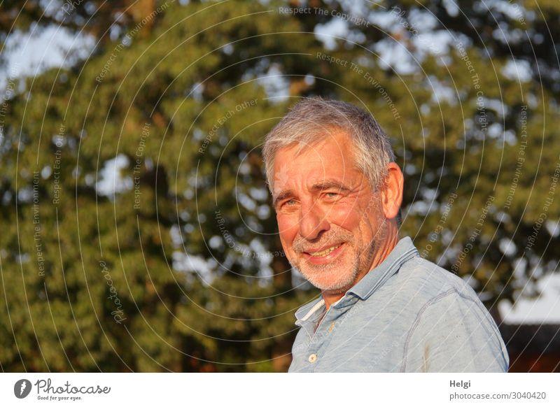 Senior in der Abendsonne Mensch Natur Mann Pflanze blau grün Baum Erwachsene Umwelt natürlich grau Zufriedenheit maskulin Lächeln 60 und älter