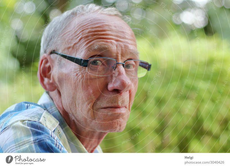 Nahaufnahme eines männlichen Seniors, der skeptisch in die Kamera schaut Mensch maskulin Mann Erwachsene Männlicher Senior Kopf Haare & Frisuren Gesicht 1
