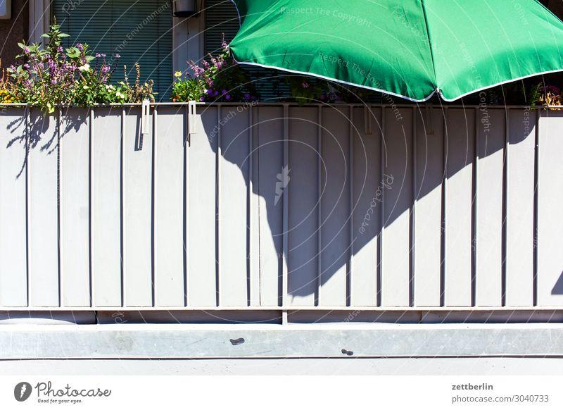Sommer am Balkon Blume Blühend Blüte Erholung Ferien & Urlaub & Reisen Menschenleer Natur Pflanze ruhig Textfreiraum Stadt Häusliches Leben Wohnung Sonnenschirm