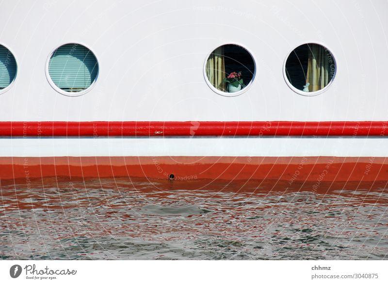Bullaugen Schiff Schifffahrt Außenaufnahme Wasserfahrzeug flusskreuzfahrt weiß maritim Kreuzfahrt Bootsfahrt Ausflug Tourismus Ferien & Urlaub & Reisen