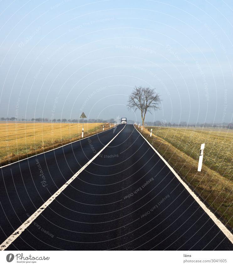 Zielgerade Umwelt Natur Landschaft Herbst Feld Verkehr Verkehrswege Straße Wege & Pfade Schilder & Markierungen Optimismus Beginn Horizont Perspektive