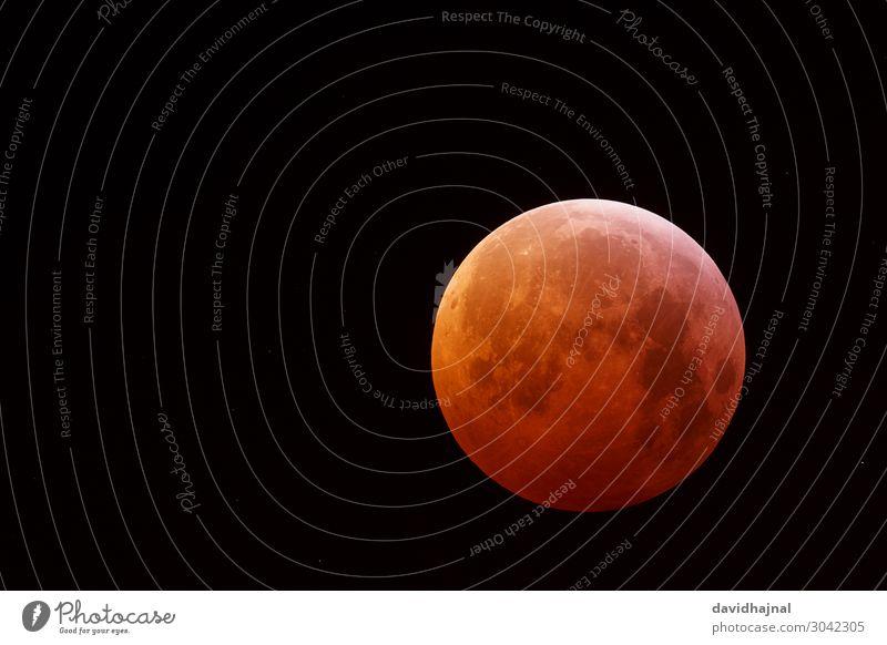 Mondfinsternis 21. Januar 2019 Abenteuer Technik & Technologie Wissenschaften Fortschritt Zukunft High-Tech Raumfahrt Astronomie Teleskop Kunst Umwelt Natur