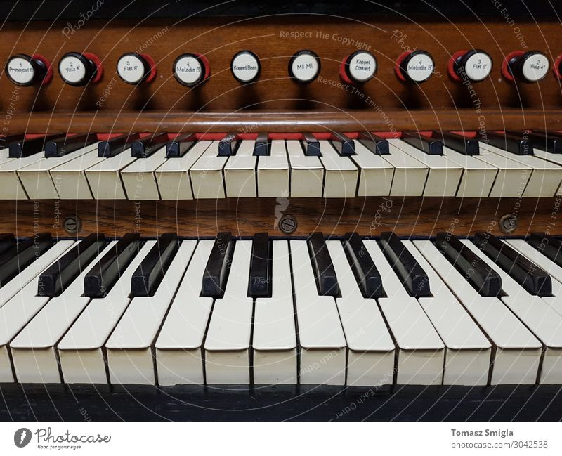 Altes altes Harmonium, Pfeifenorgel-Tastatur Nahaufnahme, frontal Freizeit & Hobby Musik Kunst Konzert Musiker Kirche Holz retro Religion & Glaube Kathedrale