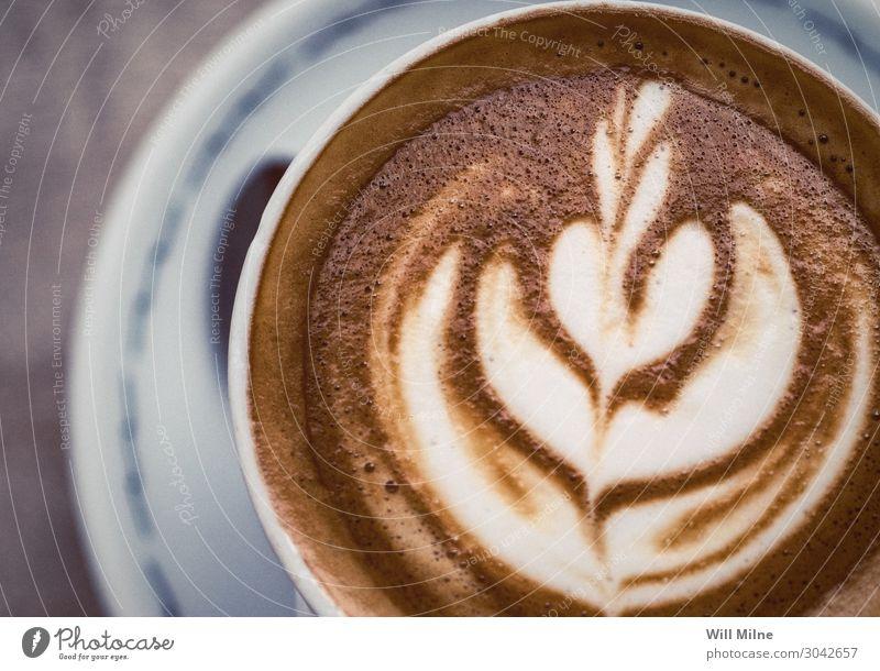Eine Nahaufnahme eines Cappuccinos aus der Nähe Kaffee Espresso Latte Getränk trinken heiß Schaum Rosette Barista Kunst