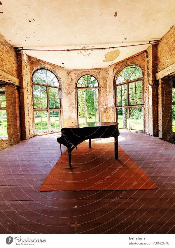 Flügel alt schön grün Haus Fenster Architektur Wand Gebäude Kunst Mauer braun hell Tür dreckig Musik Glas