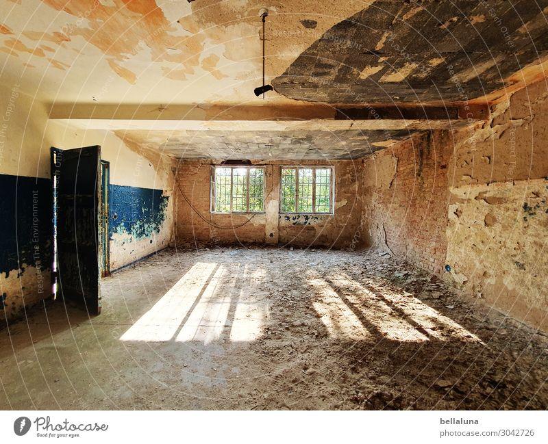 Verfall Sonnenlicht Sommer Menschenleer Haus Ruine Mauer Wand Fenster Tür Sehenswürdigkeit gruselig hell verfallen Bauschutt Decke Sand blau braun Holz Baum