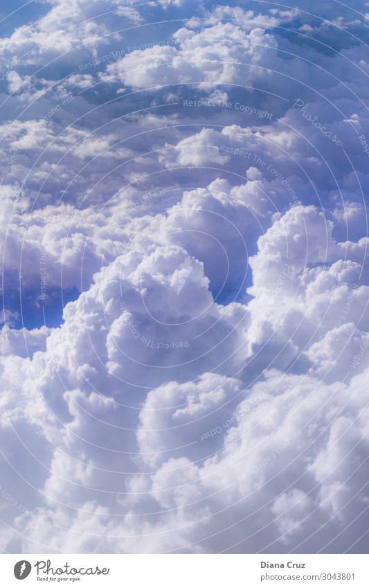 Von oben Tourismus Ausflug Abenteuer Freiheit Luftverkehr Himmel Wolken Sonnenlicht Klima Wetter Schönes Wetter Flugzeug Flugzeugausblick