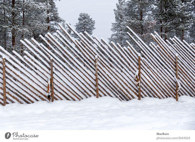 schneebedeckter Zaun Natur Landschaft Winter Wetter Eis Frost Schnee Park Wald Holzzaun Sicherheit Schutz kalt Schneefall diagonal Holzwand Menschenleer