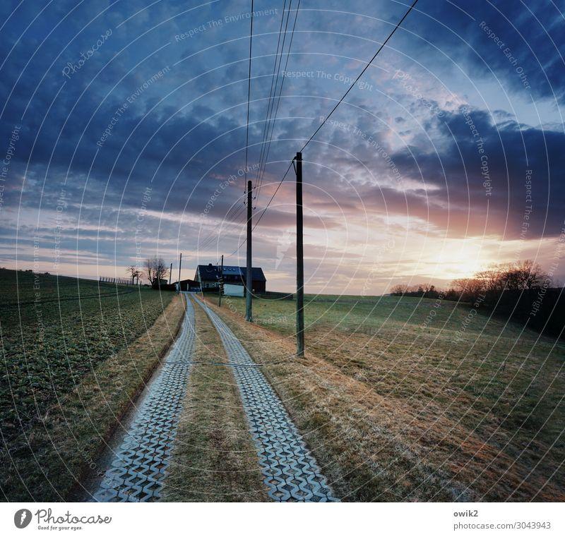 Hochsitz Umwelt Natur Landschaft Pflanze Himmel Wolken Horizont Sonne Schönes Wetter Baum Gras Wiese Wald Thüringen Dorf Haus Gebäude Wege & Pfade Strommast