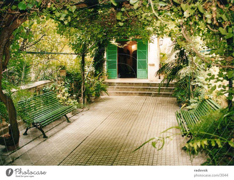 Arabischer Garten grün Blatt Garten Bank Dach Sitzgelegenheit Pflanze