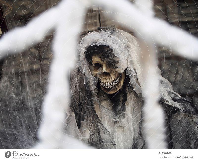 Leichenbraut an Halloween Dekoration & Verzierung Feste & Feiern Hochzeit weiß Tod Farbe Tradition Hintergrund Braut Feiertag Skelett Schädel Spinnennetz