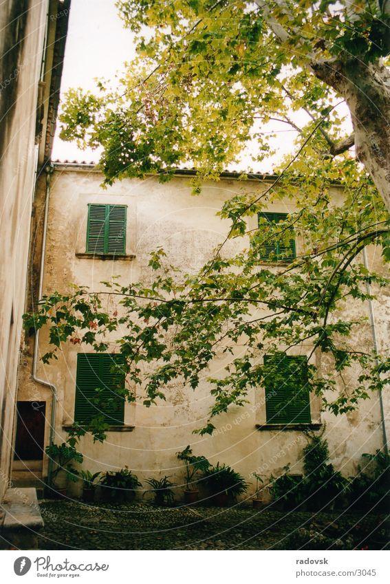 Jardin de Alfabia, Mallorca alt Baum Haus Garten Bauernhof