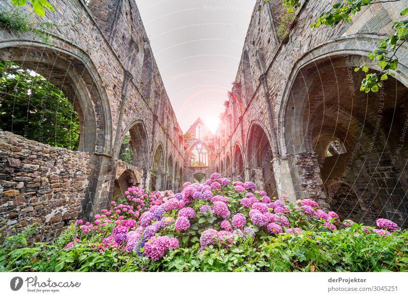 Abtei Beauport in der Bretagne Ferien & Urlaub & Reisen Tourismus Ausflug Sommerurlaub Dorf Kirche Ruine Bauwerk Gebäude Architektur Sehenswürdigkeit