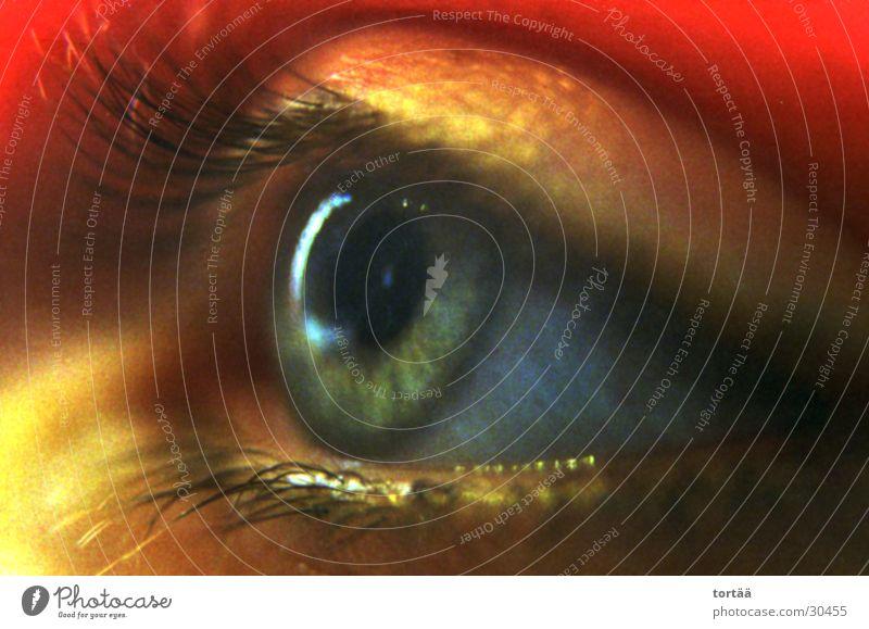 Augenblick Mensch Gesicht Auge Digitalfotografie