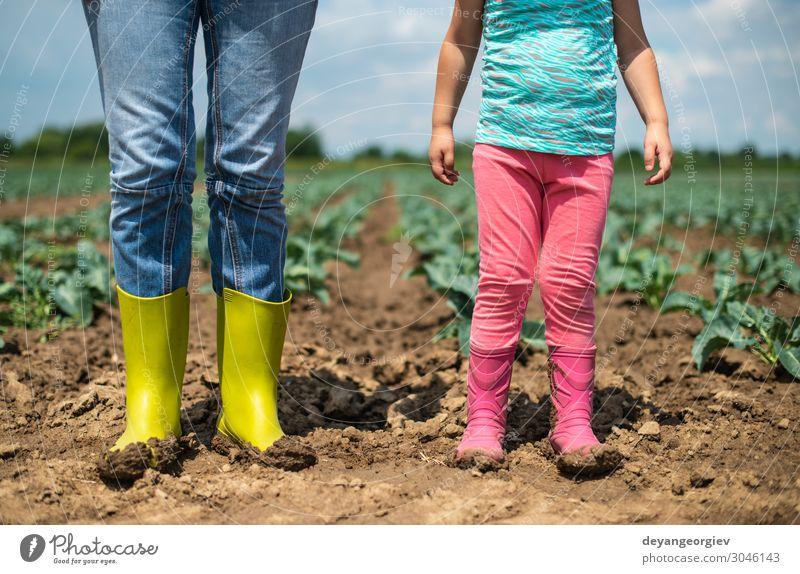 Frau und Kind auf der Kohlplantage. Gemüse Kindererziehung Gartenarbeit Mensch Erwachsene Paar Kindheit Umwelt Landschaft Pflanze Erde Stiefel Wachstum Ackerbau