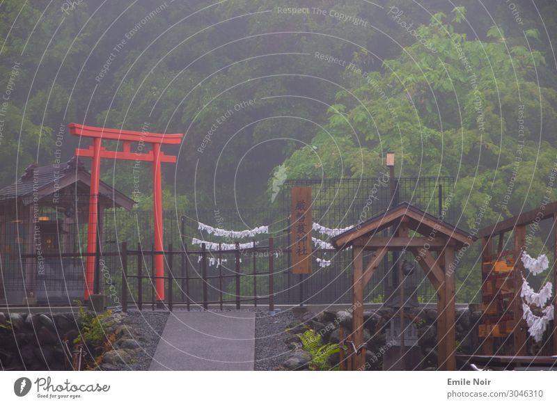 Nebel Torii Fujinomiya Japan Architektur Tempel O-Torii Tor Abenteuer Kultur Surrealismus Tourismus Farbfoto Außenaufnahme Tag