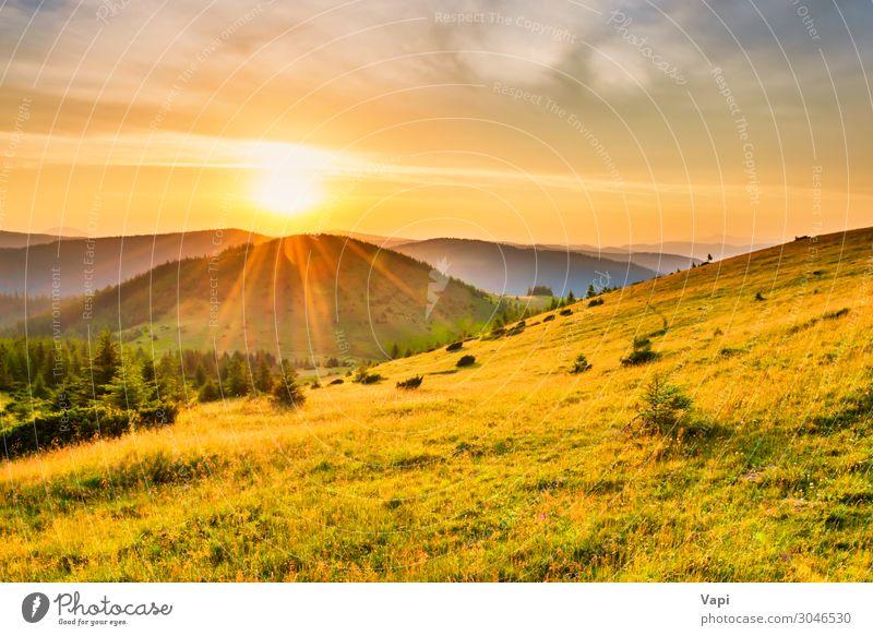 Himmel Ferien & Urlaub & Reisen Natur Himmel (Jenseits) Sommer Pflanze blau Farbe schön grün weiß Landschaft rot Sonne Baum Wolken