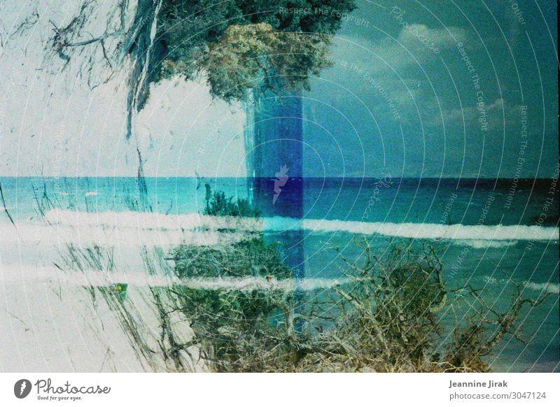 Tunesien 1997 Ferien & Urlaub & Reisen Pflanze Wasser Landschaft Meer Erholung Ferne Strand Tourismus Schwimmen & Baden Ausflug träumen Wellen Abenteuer Klima