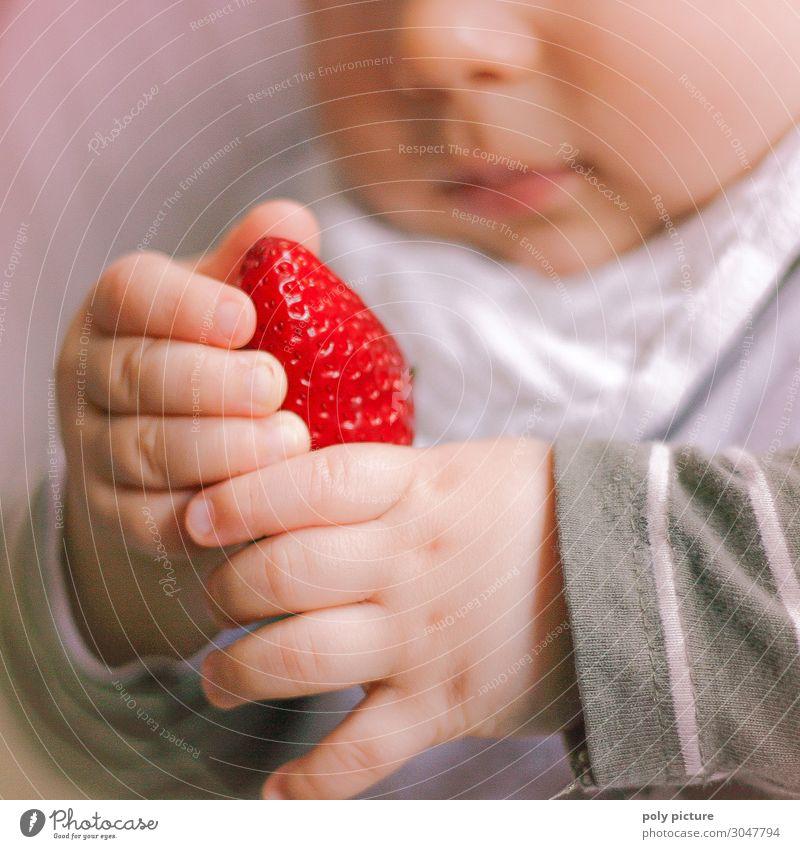 Baby spielt mit Erdbeere Kind Natur Gesunde Ernährung Sommer Pflanze Hand Gesundheit Lifestyle Leben Umwelt Frühling Familie & Verwandtschaft Gesundheitswesen