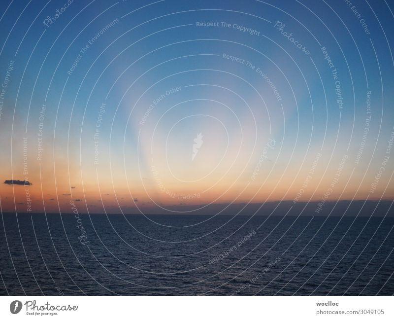 Caribbean Dawn Kreuzfahrt Meer Wasser Himmel Wolkenloser Himmel Sonnenaufgang Sonnenuntergang Sonnenlicht Schönes Wetter Golf von Mexico Karibisches Meer blau