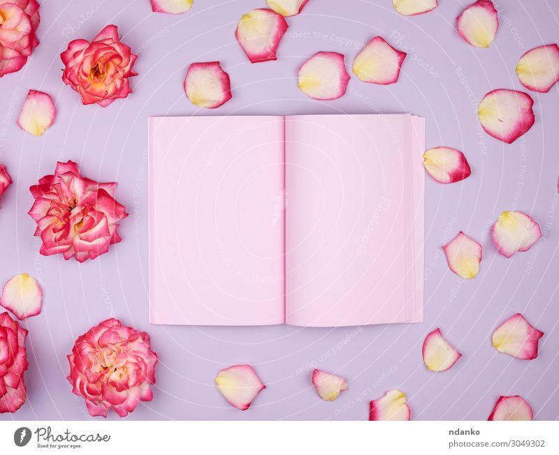 offenes Notizbuch mit rosa leeren Seiten Design Dekoration & Verzierung Feste & Feiern Hochzeit Geburtstag Arbeitsplatz Business Buch Pflanze Blume Blüte Papier
