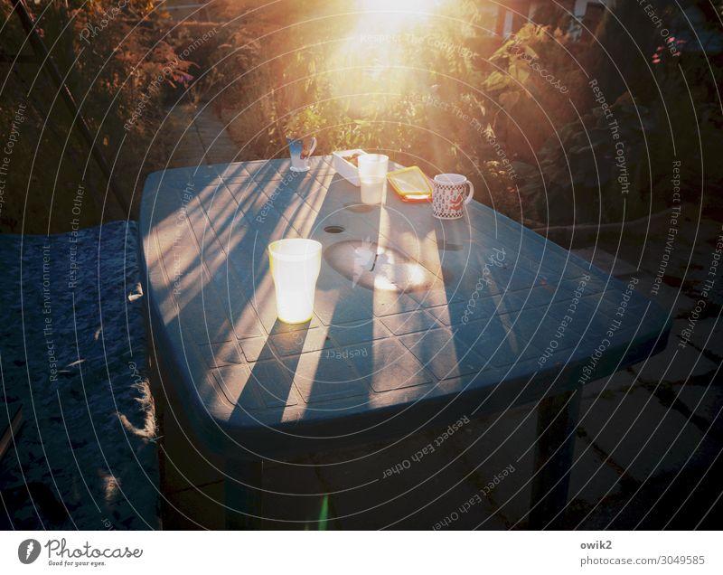 Abends im Garten Sonne Sommer Wärme Pflanze Blume Sträucher Gartentisch Becher Tasse Kunststoff leuchten Idylle Farbfoto Außenaufnahme Menschenleer