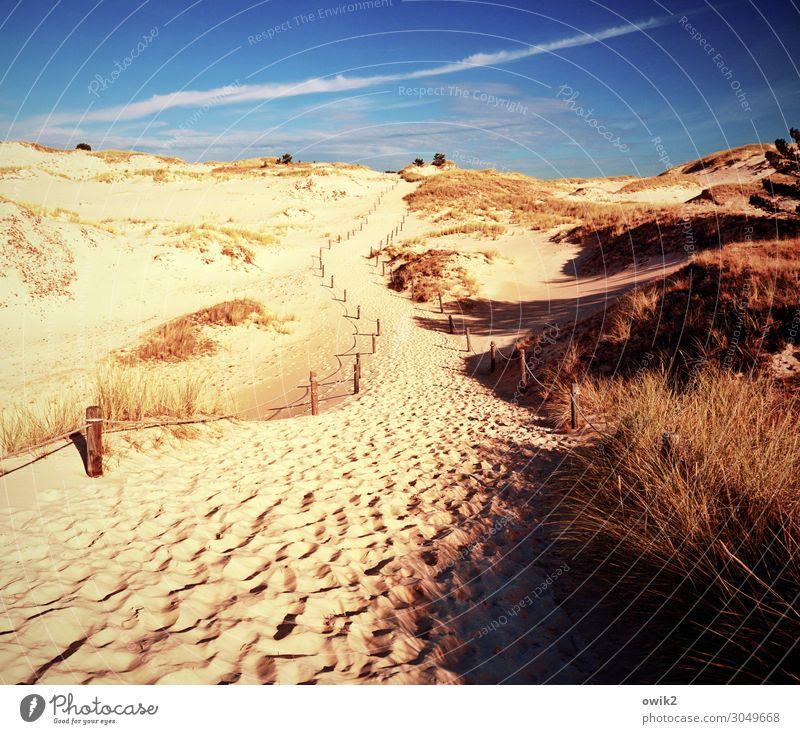 Gedüns Umwelt Natur Landschaft Pflanze Sand Himmel Wolken Horizont Herbst Schönes Wetter Wind Sträucher Wüste Wege & Pfade leuchten Slowinski-Nationalpark Polen