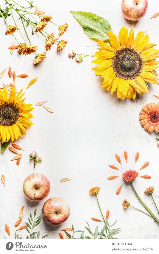 Herbst Hintergrund mit Sonnenblumen und Äpfeln Stil Design Sommer Natur Dekoration & Verzierung Blumenstrauß Hintergrundbild Apfel Rosengewächse