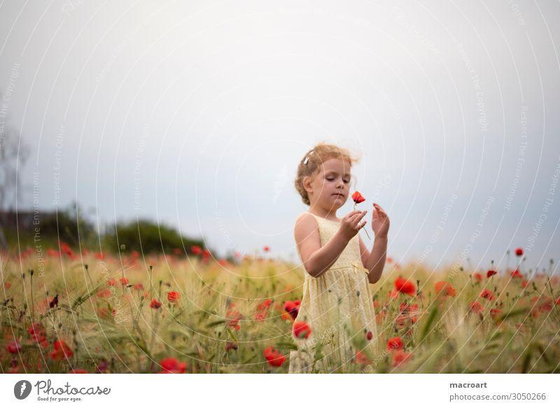 Mohnblüte Kind Mohnfeld Feld Blume Blüte rot festhalten Mädchen Frau feminin Pflanze Tier Sommer Leben mehrfarbig bezaubernd