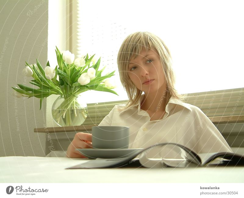 milk toast and honey Frau weiß Erholung Kaffee trinken Zeitung Tee Frühstück Tulpe Zeitschrift Blume Ernährung Mahlzeit Morgen Knollengewächse
