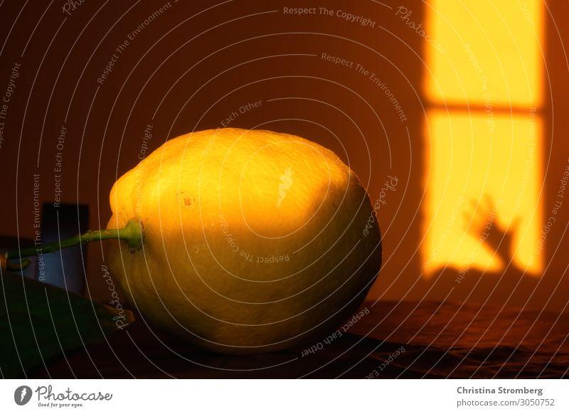 Stillleben mit Zitrone Lebensmittel Frucht Ernährung Esstisch sauer zitronengelb Zitronenschale yellow Sonnenlicht Licht Lichtspiel Lichtschein Schattenspiel
