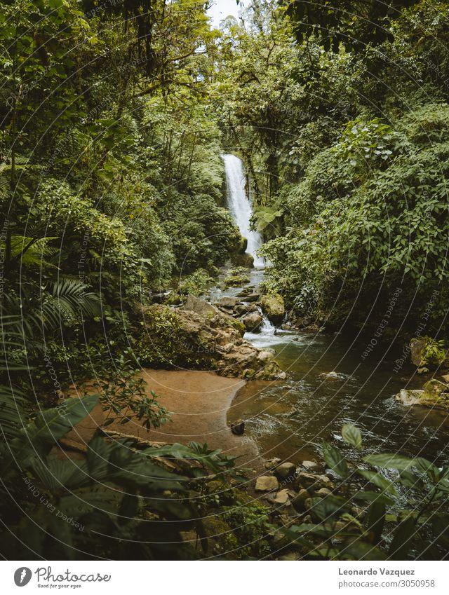 la paz wasserfall Umwelt Natur Landschaft Pflanze Wasser Wassertropfen Erde Frühling Sommer Schönes Wetter Baum Garten Park Felsen Fluss Sehenswürdigkeit gut