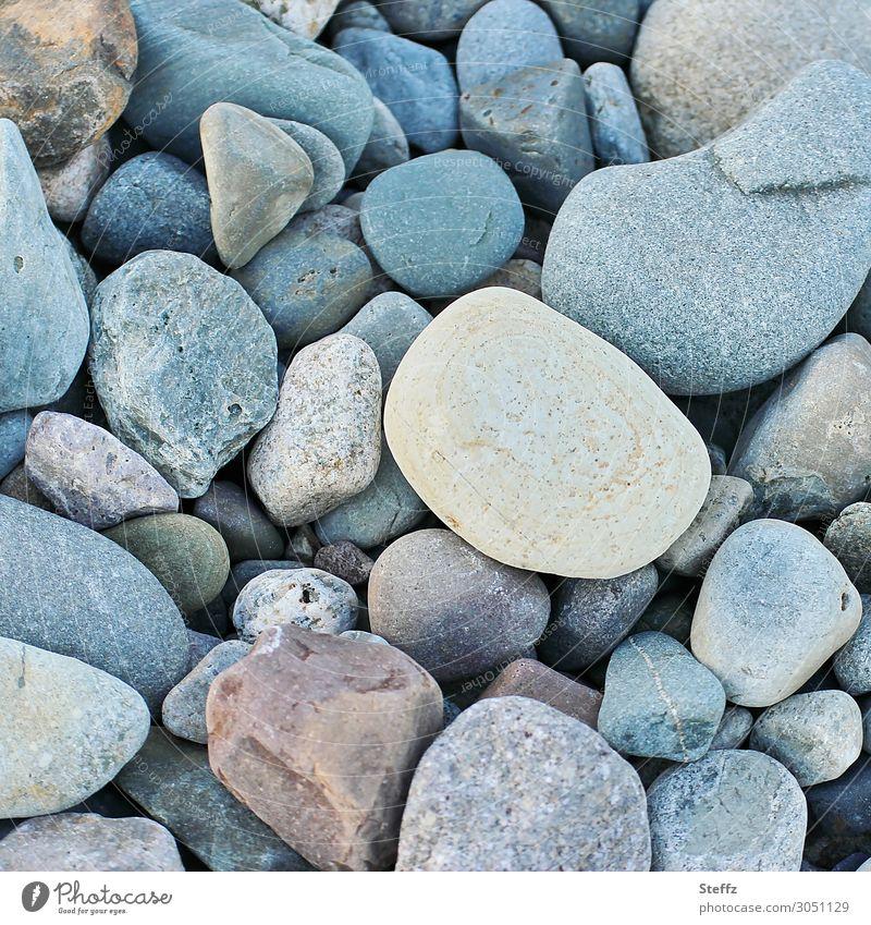 Materie Umwelt Natur Erde Steinstrand alt eckig einfach einzigartig klein nah natürlich schön viele blau achtsam Strukturen & Formen Vielfältig vielfach