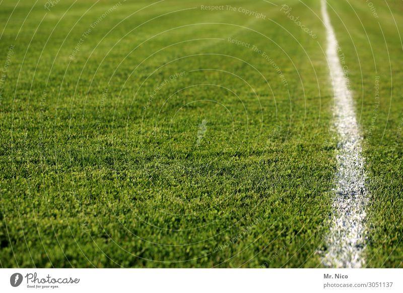 schön gerade grün weiß Wiese Sport Gras Spielen Freizeit & Hobby Linie Fußball Spielfeld Sportrasen Halm Am Rand Sportveranstaltung Stadion