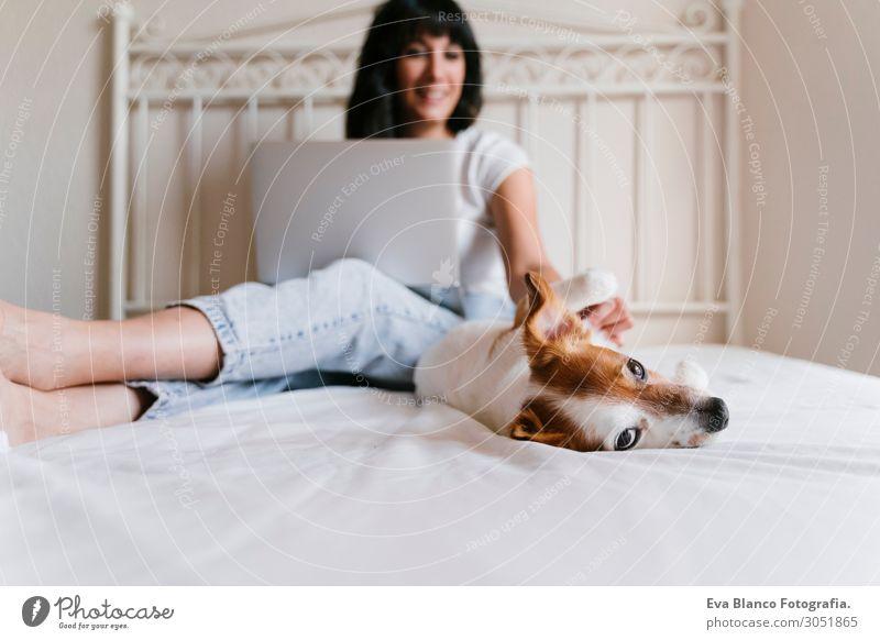 junge Frau auf dem Bett, die am Laptop arbeitet, süßer kleiner Hund nebenbei Lifestyle Freude Glück schön Erholung Spielen Wohnung Computer Notebook