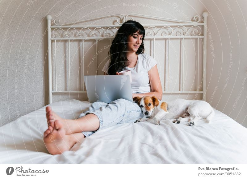 junge Frau auf dem Bett, die am Laptop arbeitet, süßer kleiner Hund nebenbei Lifestyle Freude Glück schön Erholung Freizeit & Hobby Spielen