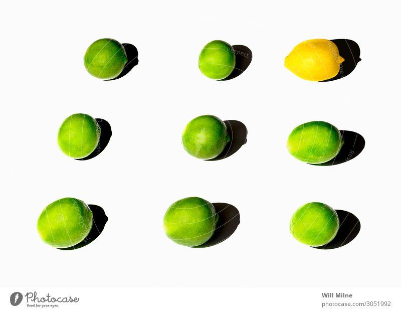Limetten und Zitronen im Raster Lebensmittel Zitrusfrüchte Frucht Limone grün gelb einfach sehr wenige Hintergrund neutral arrangiert Sommer