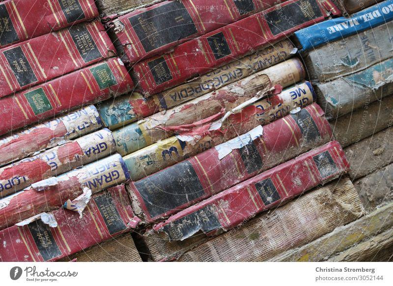 Bücherstapel Sammlung Weisheit Information Papier Studium Haufen Wissenschaften Schule lernen Bibliothek Literatur Stapel Buch Altpapier Bookstore lesen Bildung