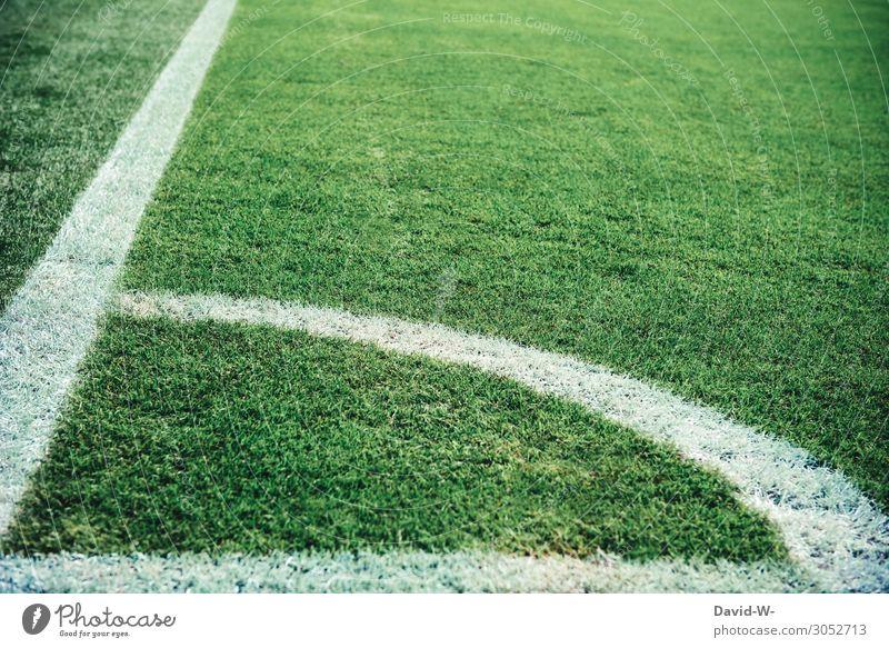 Fußballplatz grüner Rasen und weiße Linien Fußballstadion Sport Außenaufnahme Farbfoto Stadion Sportstätten Spielen Sportveranstaltung Freizeit & Hobby